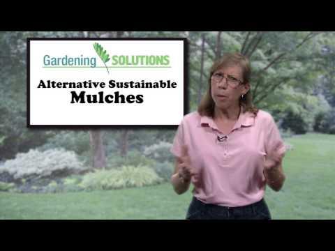 Gardening Solutions - Alternative Sustainable Mulches