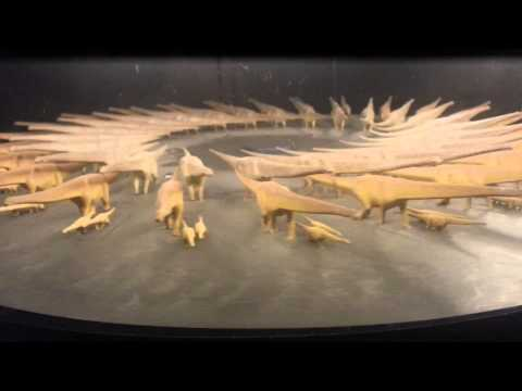Phi phenomenon, dinosaurs at Perot Museum, Dallas