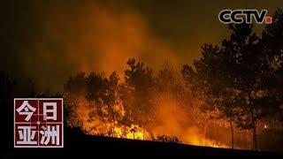 [今日亚洲]速览 告急!浓烟肆虐 印尼森林大火蔓延波及邻国| CCTV中文国际