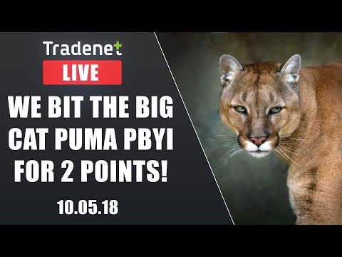 Day Trading Live Chat Room streaming 5/10/2018