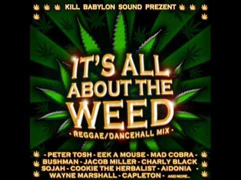 Bob Marley - Legalize It Lyrics | Musixmatch