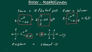 Chemie: Ester - Entstehung - Reaktion