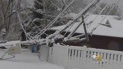 Heavy Snow Takes Down Trees, Power Lines On The Northwest Side