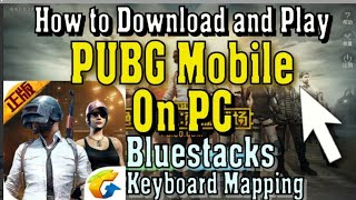 How to play pubgm on your potato pc