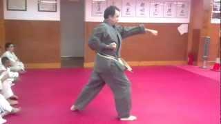 Jyoshinmon Shorin Ryu-Pinan Nidan