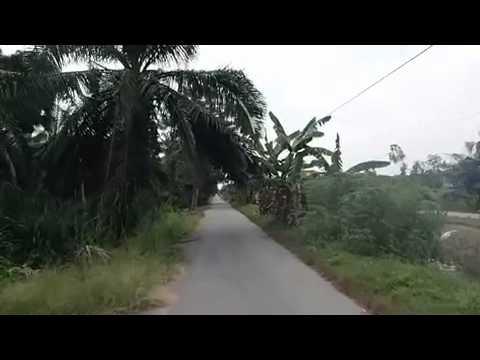Quiet rural roads in malaysia