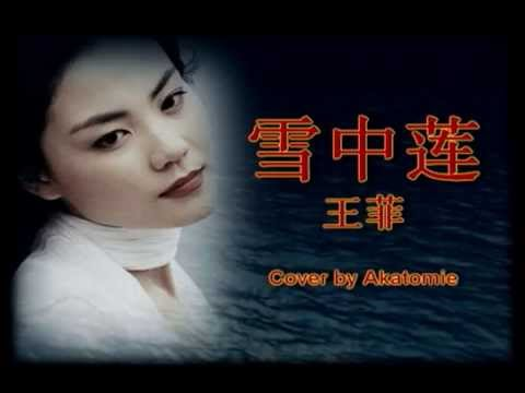 [Instru. cover] 雪中莲 Xue zhong lian - 王菲 Faye Wong cover by Akatomie