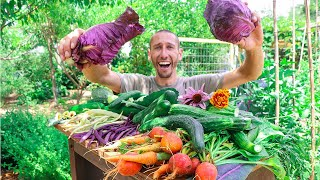 Incredible Backyard Gardening Harvest, Sustainable Food Forest Garden