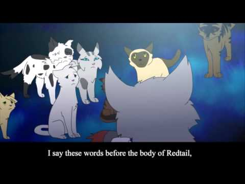 Warrior Cats Sss Episode  Part
