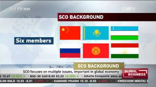 SCO focuses on multiple issues, important in global economy