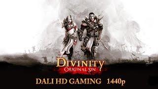 Divinity Original Sin PC Gameplay FullHD 1440p