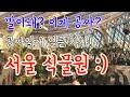때는 이때다! 임시개방 서울 식물원! 데이트 코스/ 서울 / 서울 식물원 /브이로그