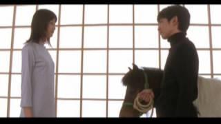 23rd single 「遥か」 発売日:2001年5月16日.
