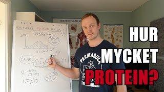 hur mycket protein per kg