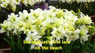 Moonlight Lady  + lyrics - Julio Iglesias, 720P HD