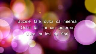 Download Ziua-n care tu m-ai sarutat Carmen Chindris Karaoke