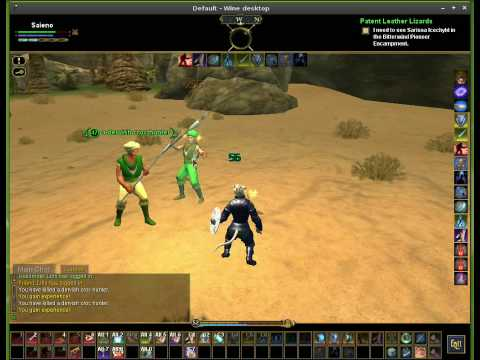 EverQuest 2 in Ubuntu 8.10