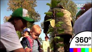 В Дубне высадили 2000 деревьев в рамках акции «Наш лес. Посади своё дерево»