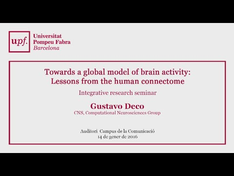 Towards a global model of brain activity