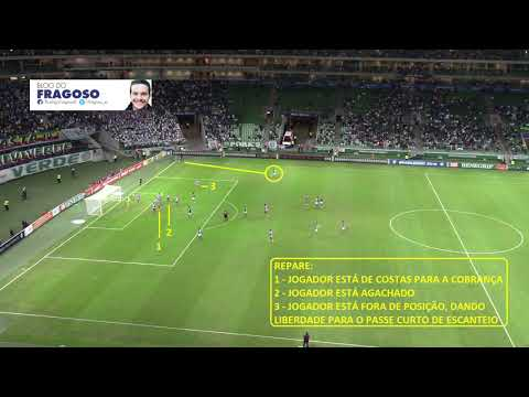 Em câmera aberta! Nível de concentração ajudou o Palmeiras a vencer o Bahia