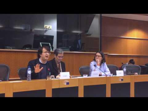 Emin Milli at the European Parliament