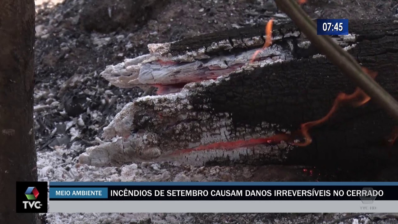 Incêndios de setembro causam danos irreversíveis no cerrado