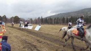 дистанционный конный пробег в п. Листвянка