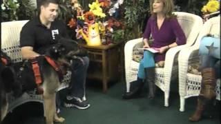 Channel 12 Pet Talk K9 Dog Sulky