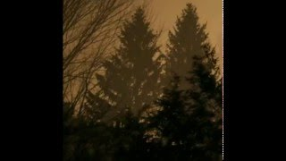 If These Trees Could Talk - Above the Earth, Below the Sky (2009)(Full Album)