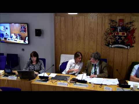 Adults Select Committee