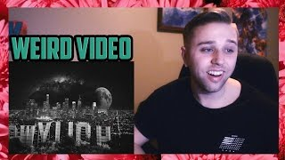 LANA DEL REY - LUST FOR LIFE (OFFICIAL AUDIO) FT. THE WEEKND (REACTION)