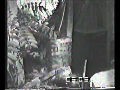 Edno Skopsko malo koe sto se vika Madzir Malo vo Skopje vo Republika Makedonia kuka turska od vremeto koga sme vojuvale so turcite a potoa vo sopstvenost na vlaska familija Santovski srusena 1988 god inaku ja vikale Alhambra