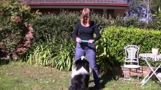 Vicki And Chilli Impulse Control
