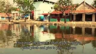 Remains of a Dream: The Jewish Saga of Kerala