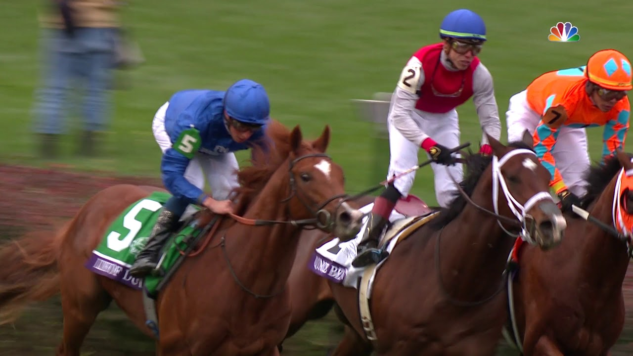 2018 Breeders Cup Juvenile Turf Line Of Duty Youtube