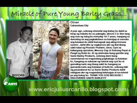 Pure Young Barley Grass Personal Testimonies 1 Youtube