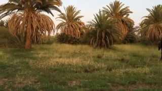 عبده جروب Abdo Gurroub