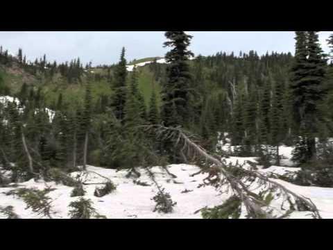 2011-08-10 Jewel Basin Hike