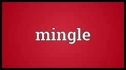 Mingle Meaning