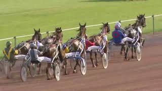 Vidéo de la course PMU PRIX NAPOLEON DE BUSSY