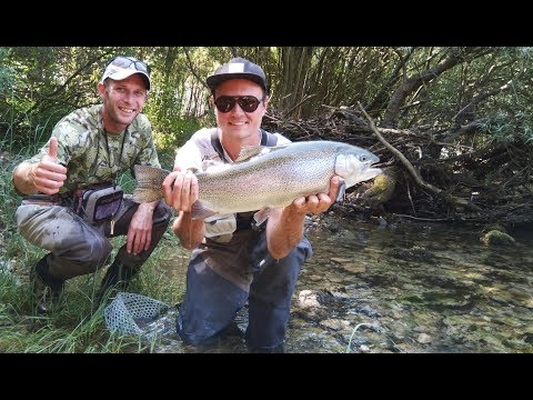 Fly Fishing In Bosnia With Guide Amir.
