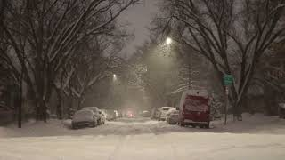 Winter Night with Heavy Snowfall | Distant Howling Wind Sounds