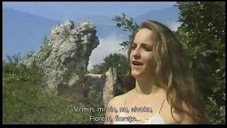 Tavaszi szél vizet áraszt – Esperanto – subteksto
