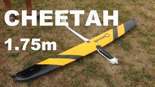 Staufenbiel Cheetah RC glider