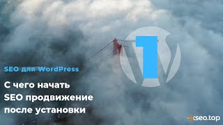 видео SEO оптимизация WordPress