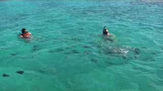 Cook Islands - Return to Paradise part five