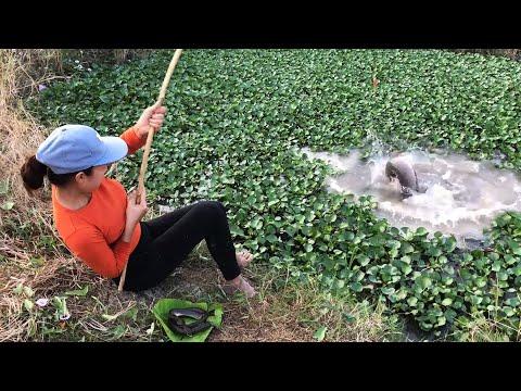 FISHING With SNAKE Vs. MONSTER SNAKEHEAD