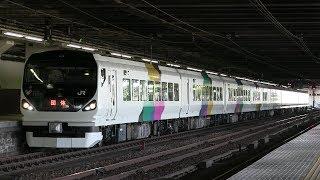 E257系による日光方面の集約臨(修学旅行列車)