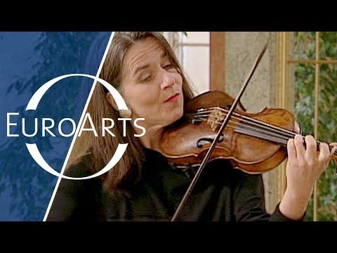 Bach: Brandenburg Concerto No. 3 in G major, BWV 1048 (Freiburger Barockorchester)
