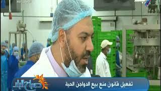 صباح البلد - د.زغلول خضر يكشف تفاصيل قانون منع بيع الدواجن الحية